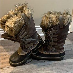Tall winter Sorels